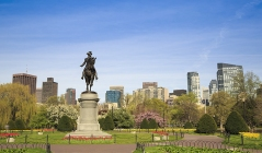 BostonPublicGarden